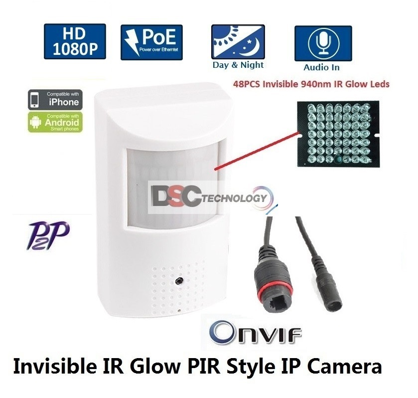 IP-Hidden/Spy Camera